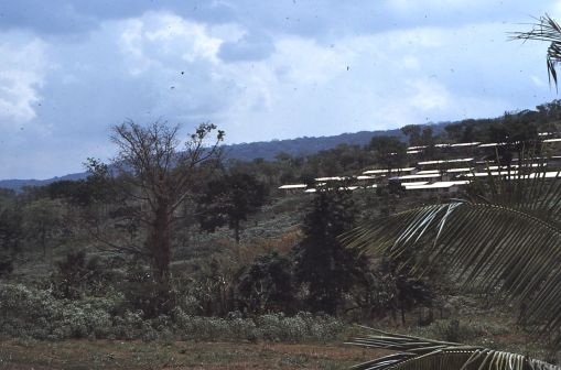 Akosomobo 1971